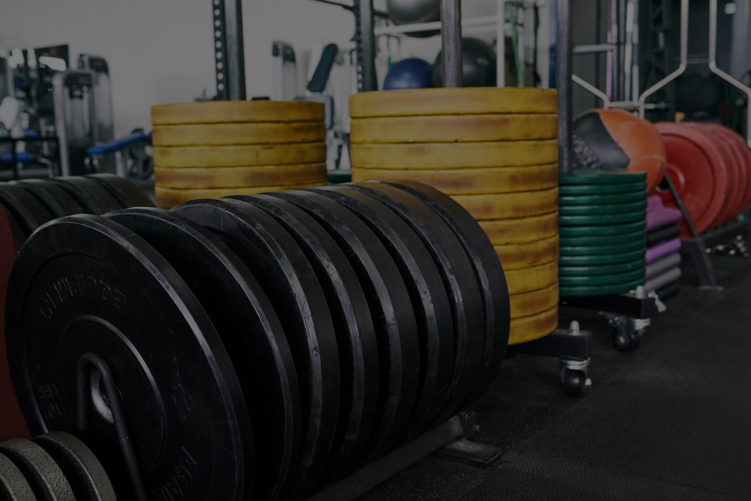 weight training, powerlifting, weight lifting trainors